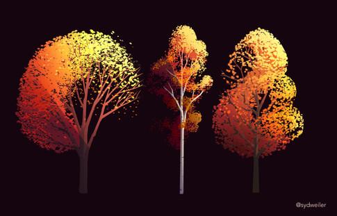sparse fall trees.jpg