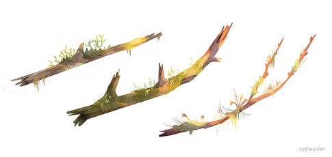 stumps-sticks.jpg