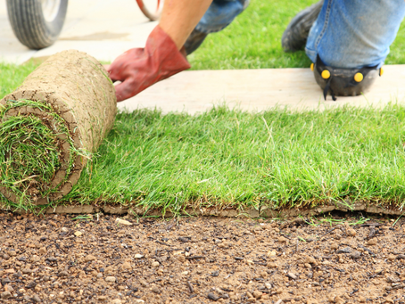 10 DIY Landscaping Tips