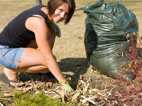 The Ultimate Spring Yard Cleanup List
