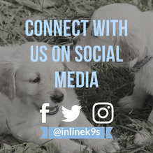 Social Media Promo.jpg