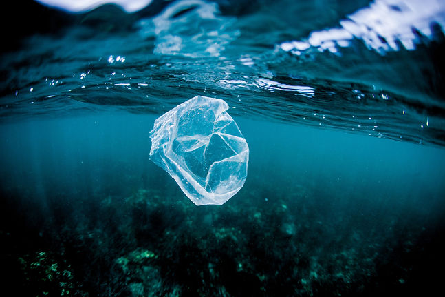 #tide_ocean_plastic_bag_RGB.jpg