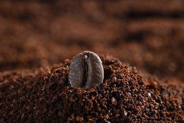 close-up-coffee-bean.jpg