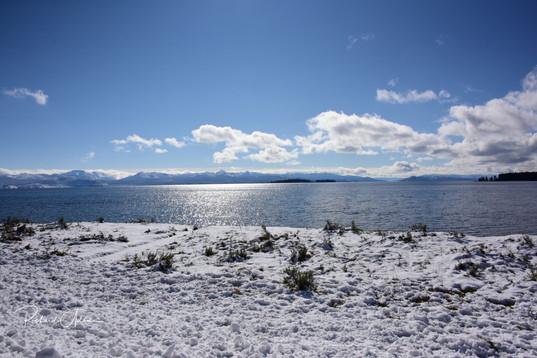 Winter Lake - Yellowstone