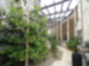 Limonaia_del_Castel_-_DSC02132.jpg