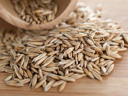 Rye-grains.jpg