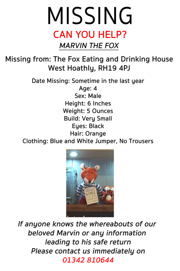 Marvin The Fox Missing - Can You Help?