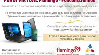20201215 Flamingo.jpg