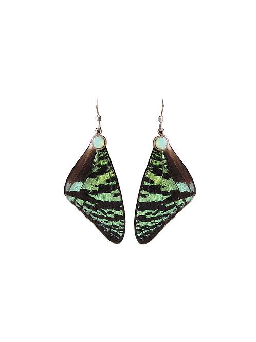 Boucles d'oreille Sunset Moth vert