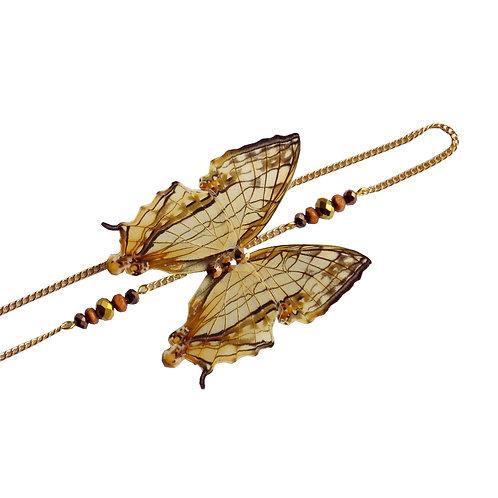 Headband papillon Nymphalidae cyrestis