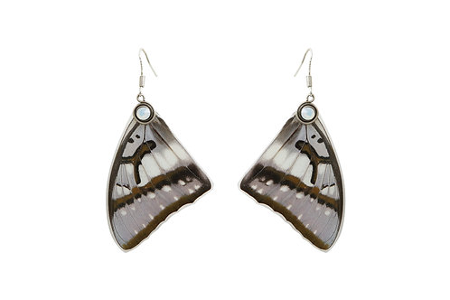 Boucles d'oreille Nymphalidae 1