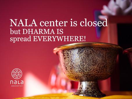Centrum Nala je uzavřeno, ale dharma je stále všude kolem nás / Nala center is temporarily closed