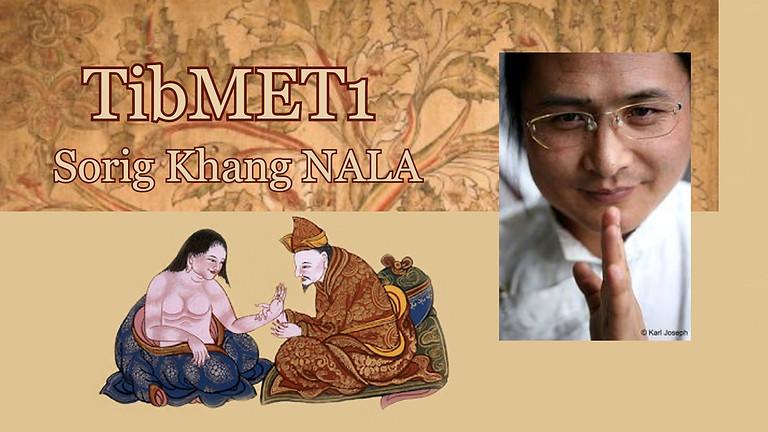 Studium tibetské medicíny a vnějších terapií - dvouletý program TibMET 1