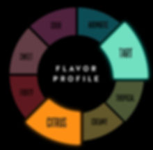 Paloma_flavorwheel.jpg