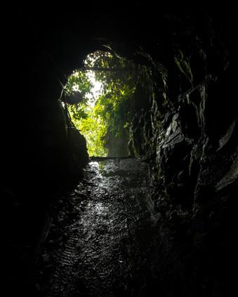 El camino a la luz