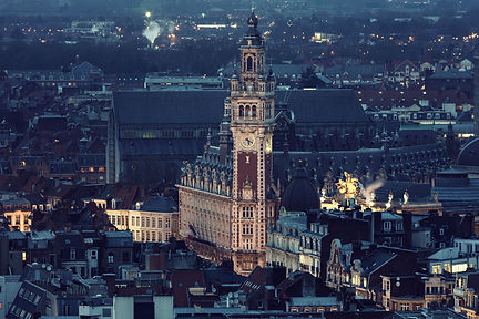 Aerial view of Lille. Lille, Nord-Pas-de