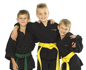 martial arts lessons leicester