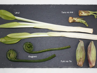 What's in season?....Spring mountain vegetables!