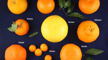 What's in season?....Citrus fruits