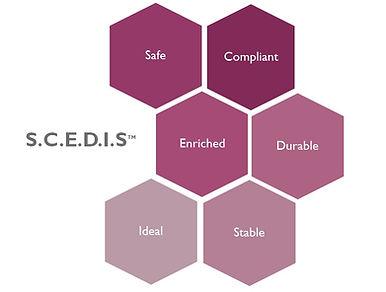 SCEDIS.jpg