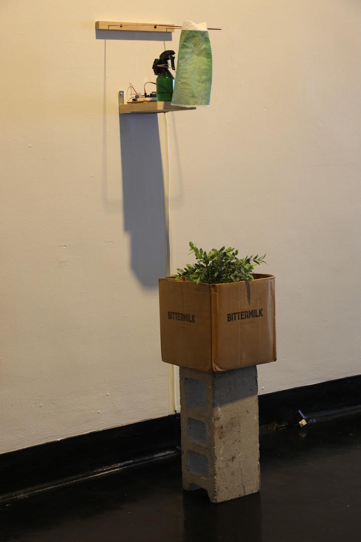 bittermilk sculpture