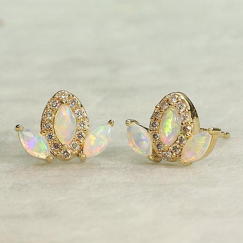 Fan Opal Earrings