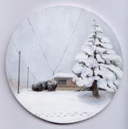 'Winter in the hood'