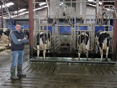 İneklerde ve Danalarda Bireysel Beslemenin Önemi / The importance of Individual Feeding For Cows