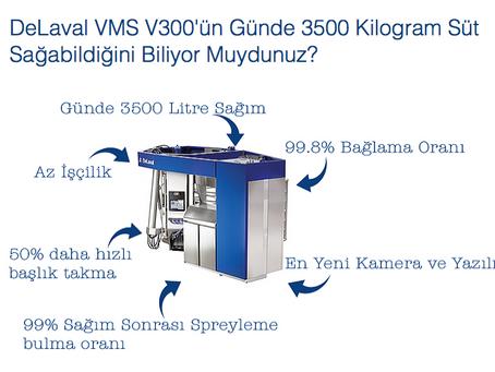 Neden DeLaval VMS V300 Süt Sağım Robotu?