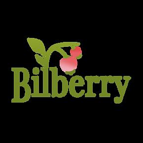 Bilberry - Logo plain (1) (1).png