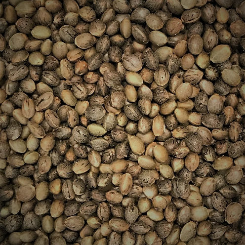 Seeds%20CU_edited.jpg
