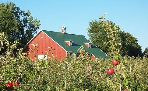 Barn_Orchard.jpg