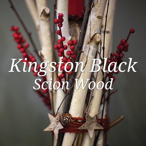 Kingston Black Scion Wood