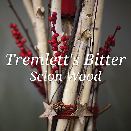 Tremlett's Bitter Scion Wood