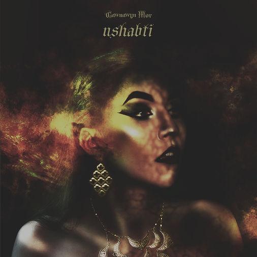 Ushabti_Cover.jpg