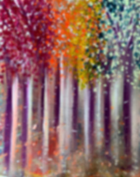 forest trees woods colours