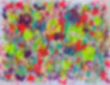 flowers colour colourful