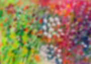 flowers colours meadow floral