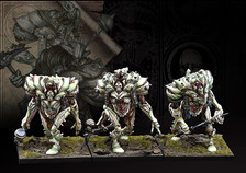 Incarnate Sentinels