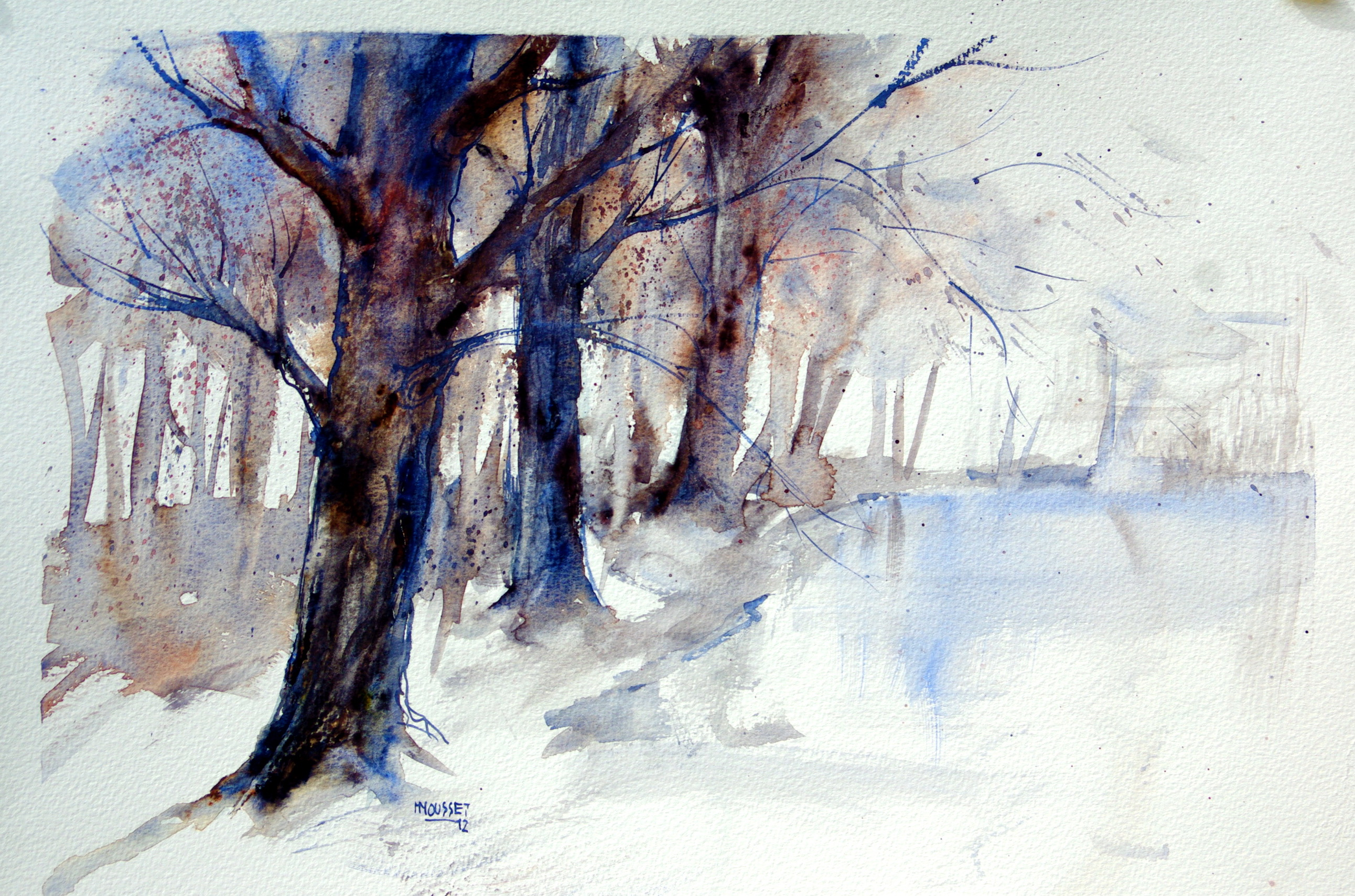 islandia:winterse bomen