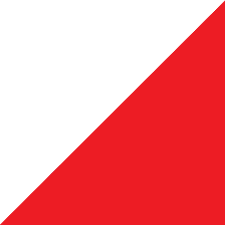triangle-red - Copy (2).png