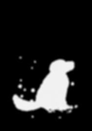 odin gitarrenunterricht perro poster.png