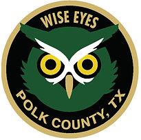 wise_eye.jpg