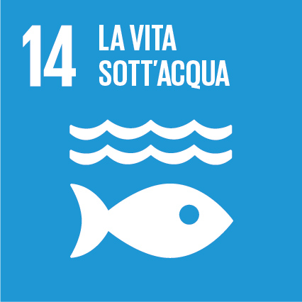 Sustainable Development Goals_IT_RGB-14