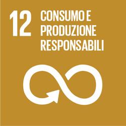 Sustainable Development Goals_IT_RGB-12