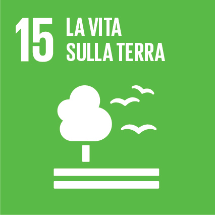 Sustainable Development Goals_IT_RGB-15