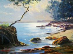 One tree rock at Huskisson Beach 2010 Oil on canvas 42 x 57 cm