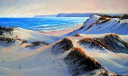 Copy (2) of Sussex inlet dunes 2003 Oil on canvas 38 x 58 cm