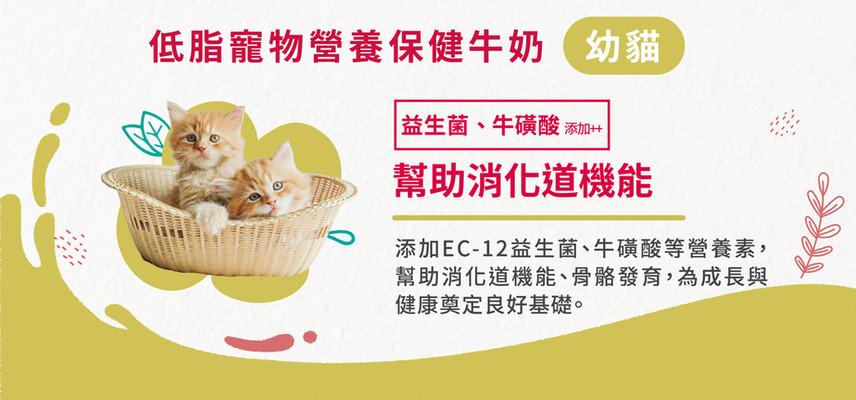 幼貓_活力博士專推_工作區域-1.jpg