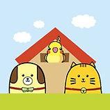 李小貓之家.jpg